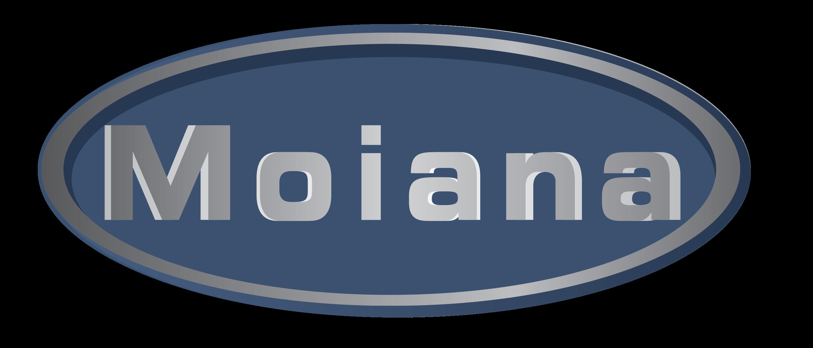 Moiana s.n.c. - Interventi in Spazi Confinati